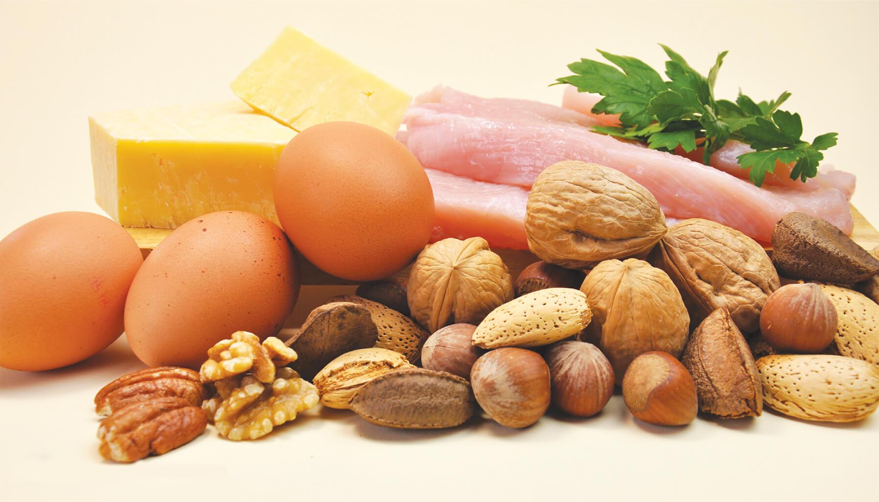 Proteína,  el nutriente aliado