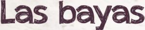 Revista Maxi - bayas