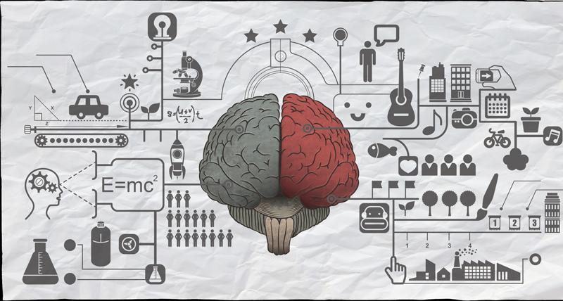 El cerebro siempre sano