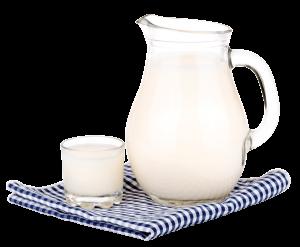 Revista-Maxi-leche-desayunos