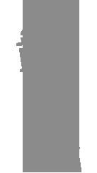Revista Maxi Torre de Pisa
