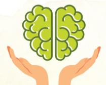 Revista Maxi - Cerebro
