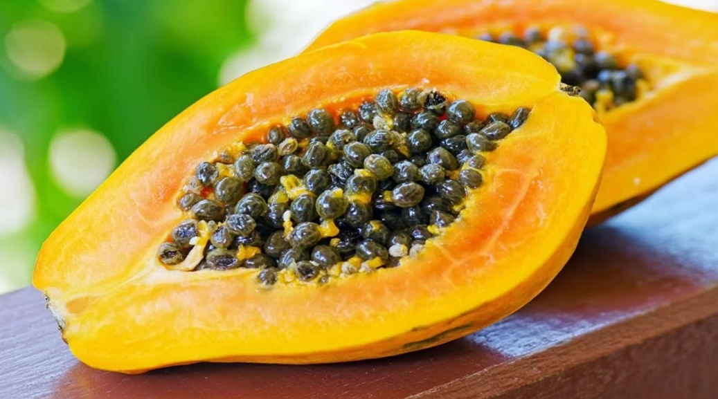 Revista Maxi - Papaya
