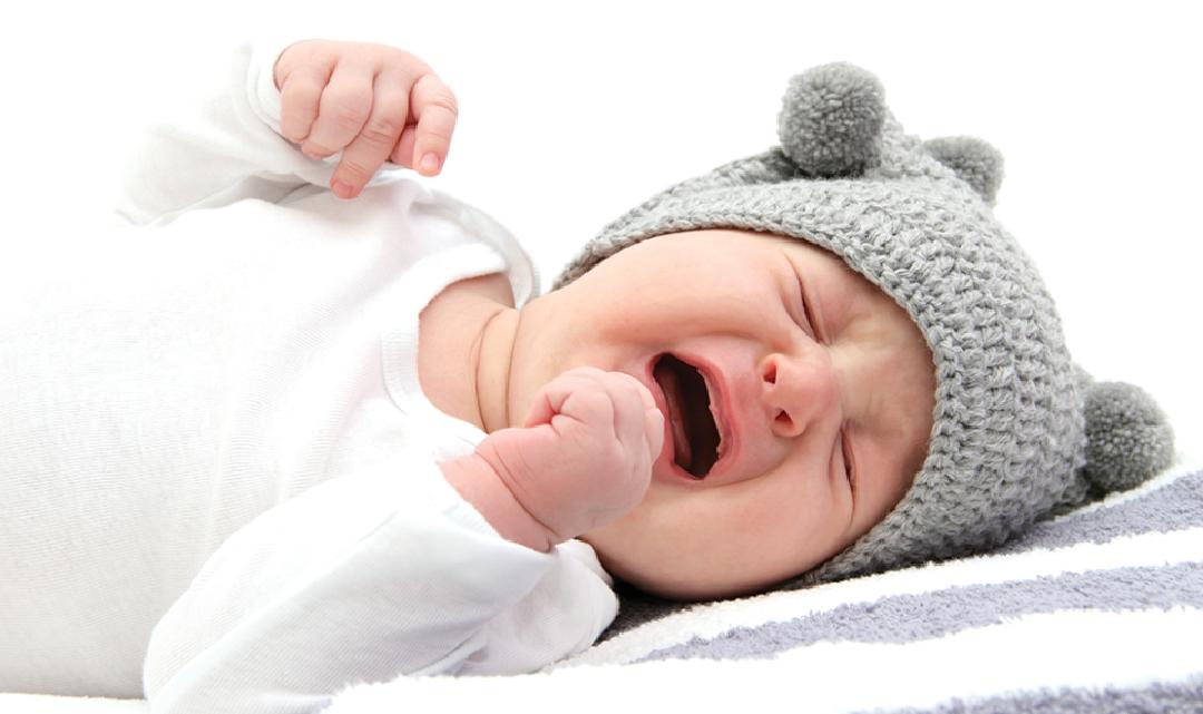 Revista Maxi - Bebé