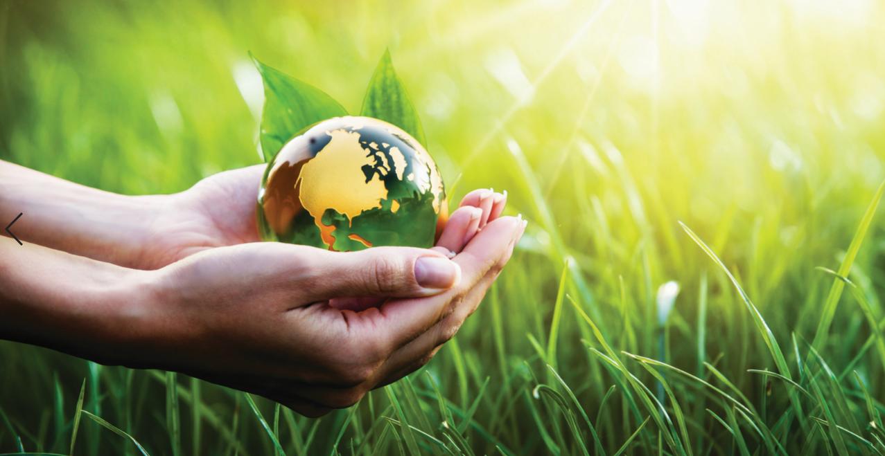 Revista Maxi - Dia Mundial del Medio ambiente