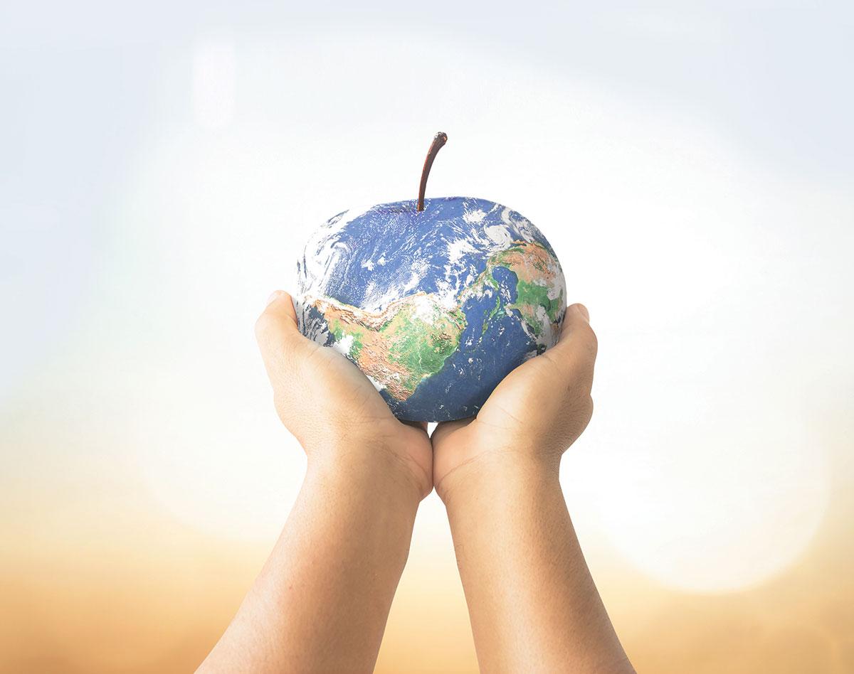 Revista Maxi - Día Mundial de la Alimentación
