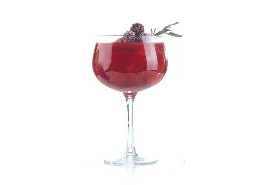 Gin frutos rojos