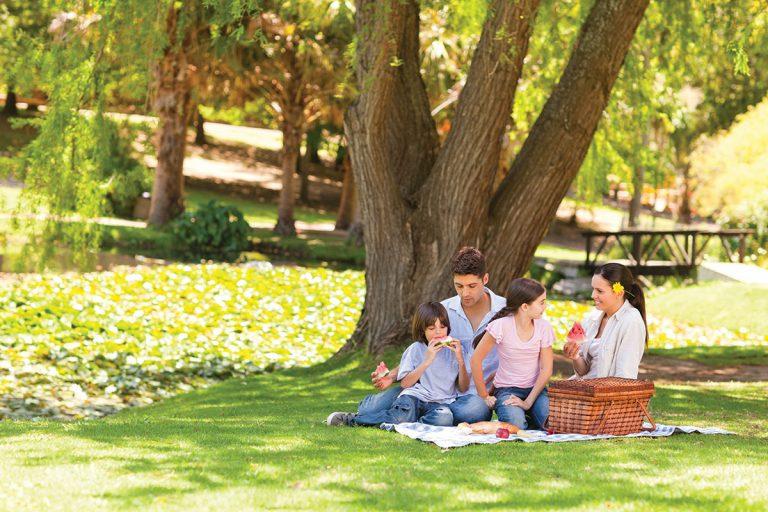 Revista Maxi - picnic toda una aventura