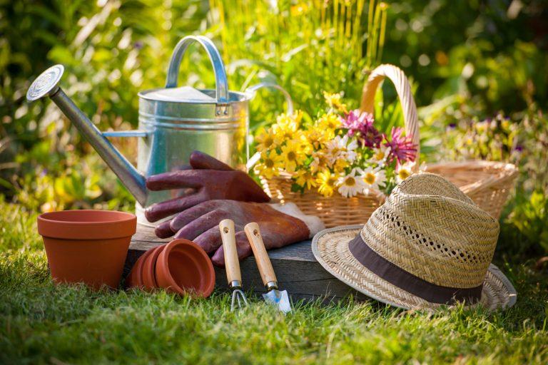 Jardinería revista Maionline