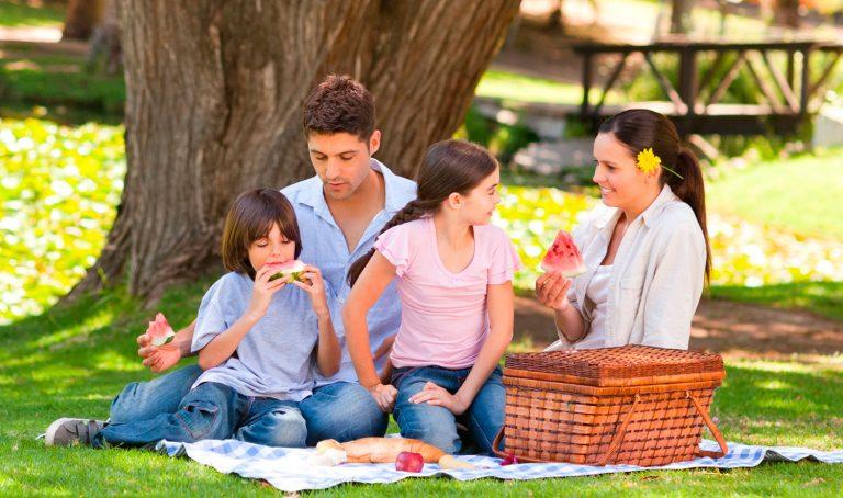 ¡Es hora del picnic!